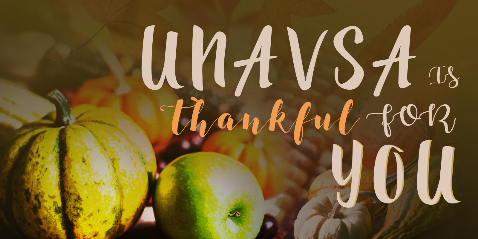 unavsa_thanksgiving-gfx-newsletter_update_01